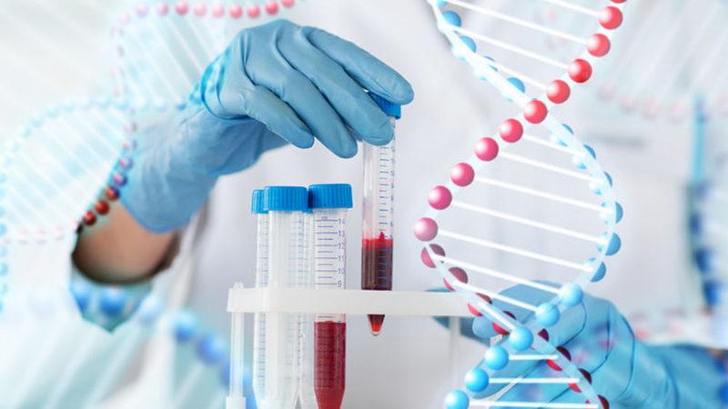 Faire un test ADN pour expliquer les mutations génétiques